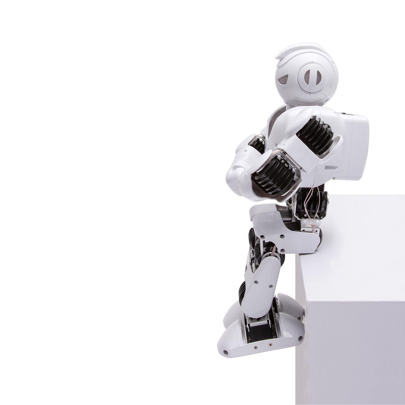Un robot ludique et éducatif Source de divertissement, Alpha 1S…